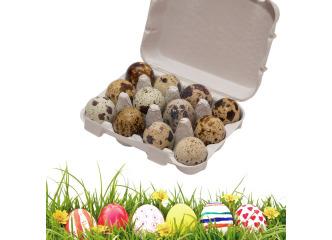 Prepeličie vajíčka 18ks