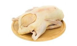 Vykŕmená hus s drobkami a pečienkou cca 5kg - Topoľnica