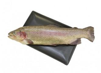 Pstruh lososovitý 1kg