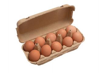 Domáce vajcia M Lieskovec 10ks